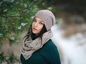 Bilder Winter Brünette Mütze Schal Blick Ast Mädchens