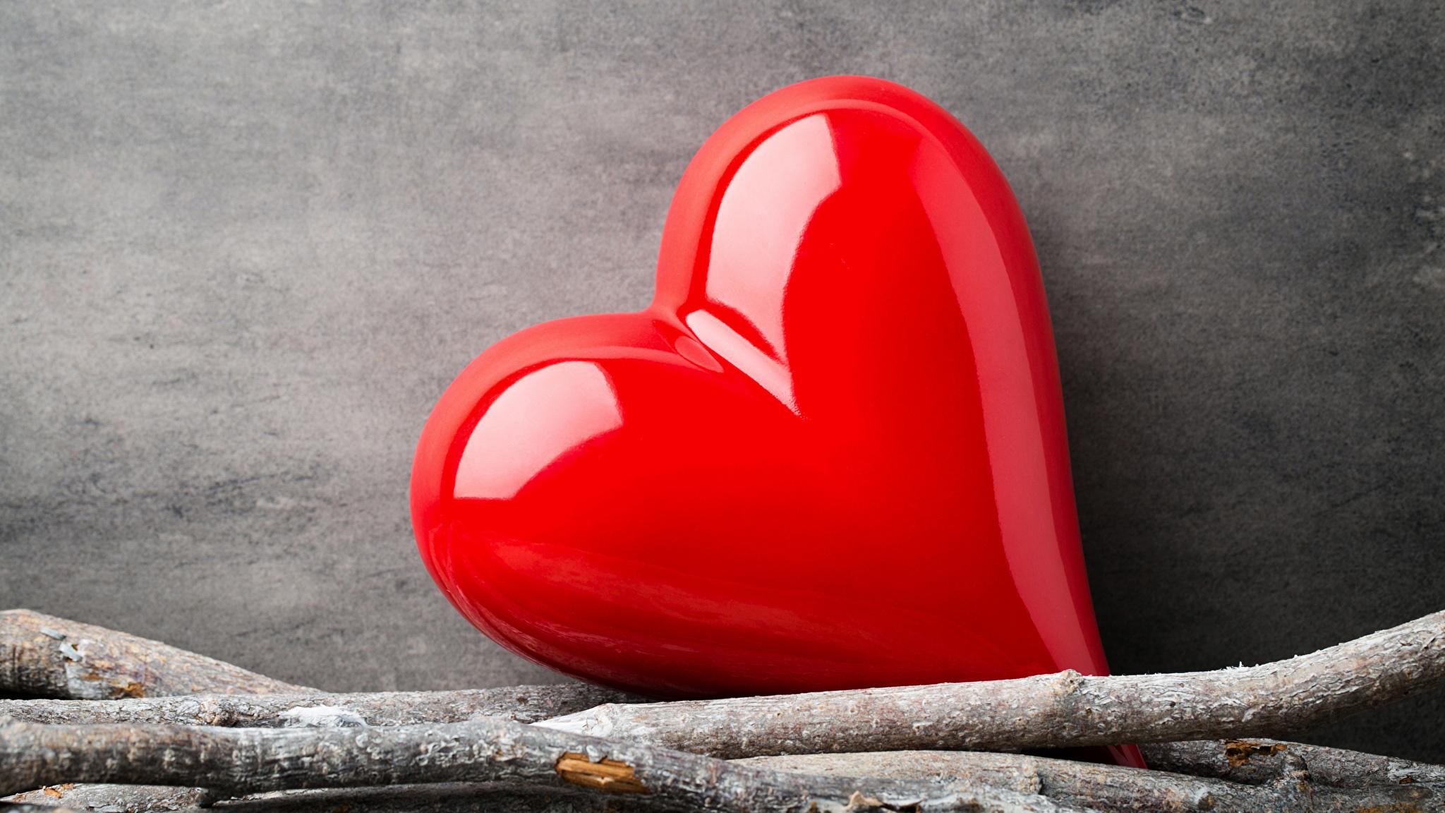 Fotos von Valentinstag Herz Rot Ast 2048x1152