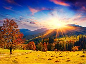 Hintergrundbilder Herbst Acker Himmel Landschaftsfotografie Bäume Hügel Sonne Natur