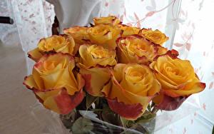 Bilder Sträuße Rosen Gelb Blumen