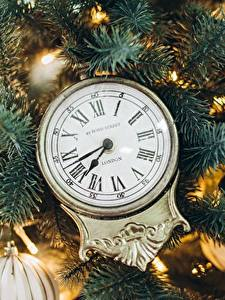 Image Clock New year Clock face Branches