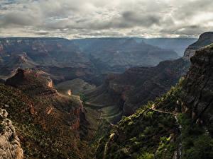 Bilder Vereinigte Staaten Grand Canyon Park Park Gebirge Canyons Natur