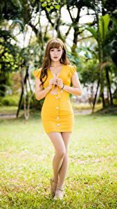 Bilder Asiatische Kleid Bein Blick Mädchens