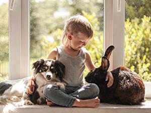 Fotos Hunde Kaninchen Junge Sitzend Kinder