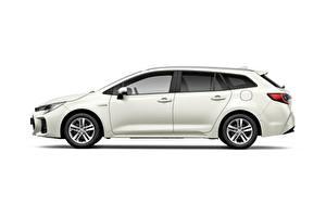 Fotos Suzuki - Autos Kombi Seitlich Weißer hintergrund Swace, 2020 automobil
