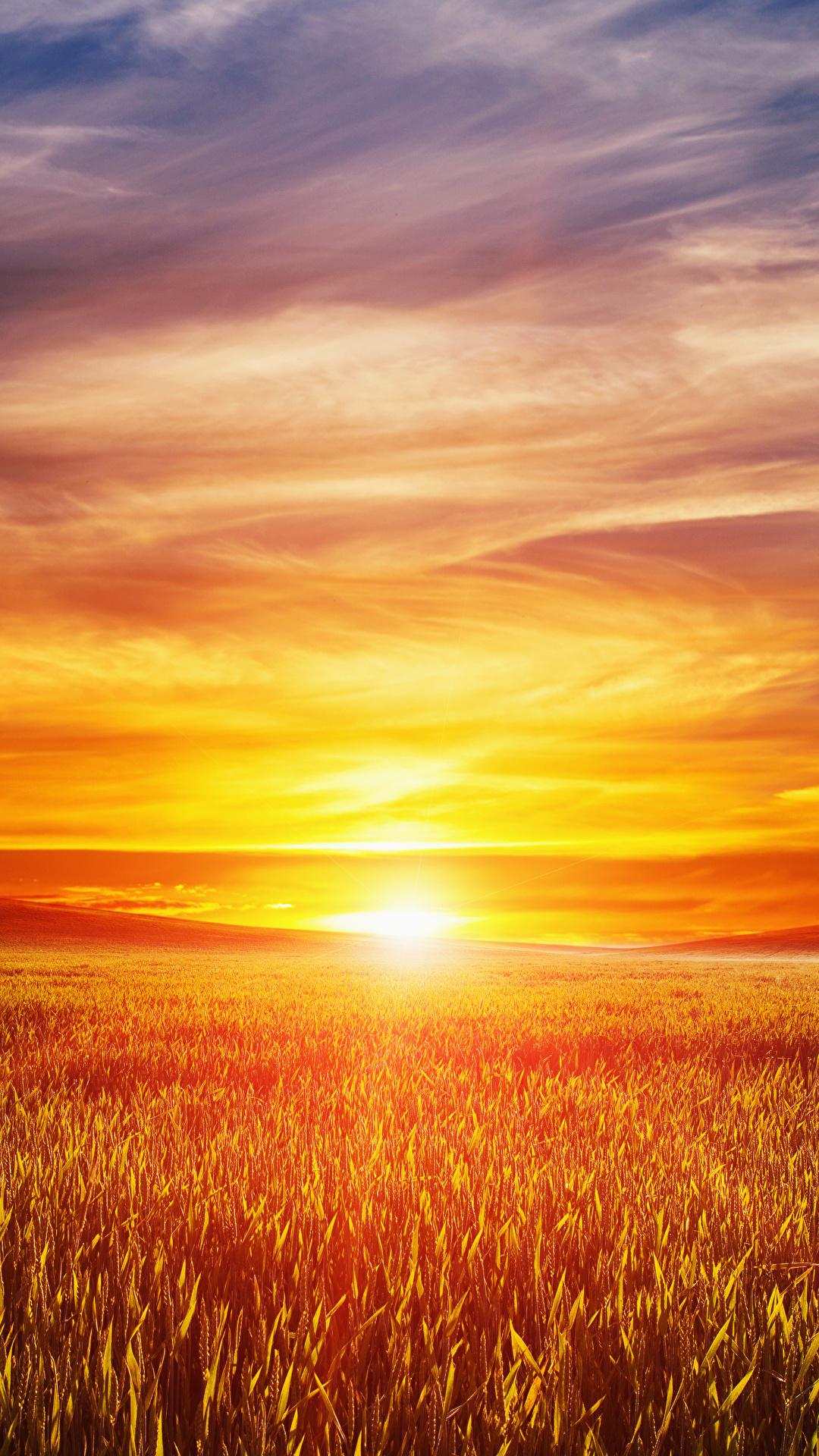 Bilder Natur Sonne Acker Himmel Landschaftsfotografie Sonnenaufgänge und Sonnenuntergänge 1080x1920 Felder
