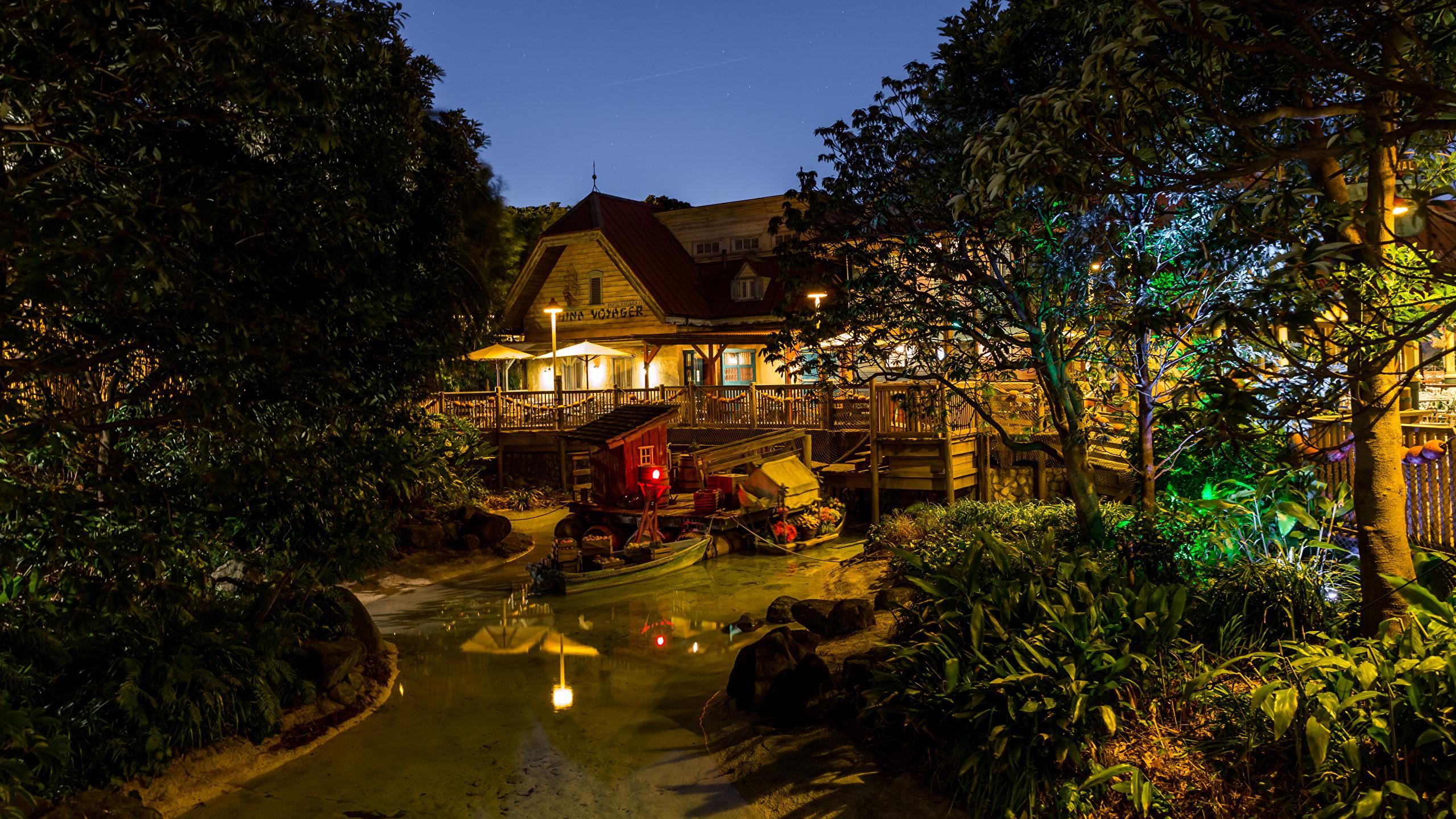 壁紙 2560x1440 日本 ディズニーランド 公園 住宅 池 デザイン 夜 木 自然 ダウンロード 写真