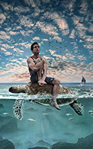 Fotos Kreativ Schildkröten Mann Wasser Himmel Sitzend ein Tier