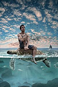 Fotos Kreativ Schildkröten Mann Wasser Himmel Sitzend Tiere