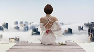 Fotos Bootssteg Braune Haare Hinten Kleid Sitzt Rücken