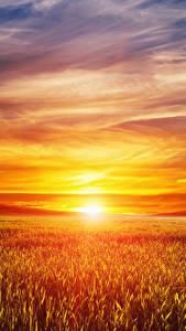 Images Landscape photography Sunrises and sunsets Fields Sky Sun