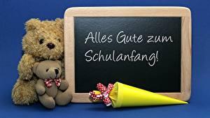 Hintergrundbilder Knuddelbär Zwei Sitzt Blau Deutscher Alles Gute zum Schulanfang