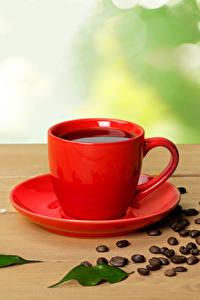 Fotos Kaffee Tasse Getreide Blattwerk Lebensmittel