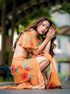 Hintergrundbilder Asiatisches Braune Haare Kleid Sitzend Blick Bokeh Mädchens