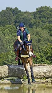 Bilder Pferdesport Pferd Sprung Sport Mädchens
