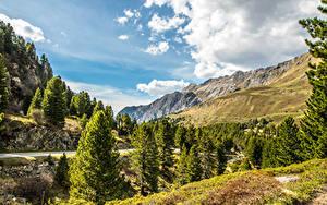 Fotos Schweiz Gebirge Himmel Landschaftsfotografie Alpen Fichten Wolke