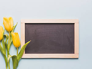 Fotos Tulpen Grauer Hintergrund Vorlage Grußkarte Gelb Blumen
