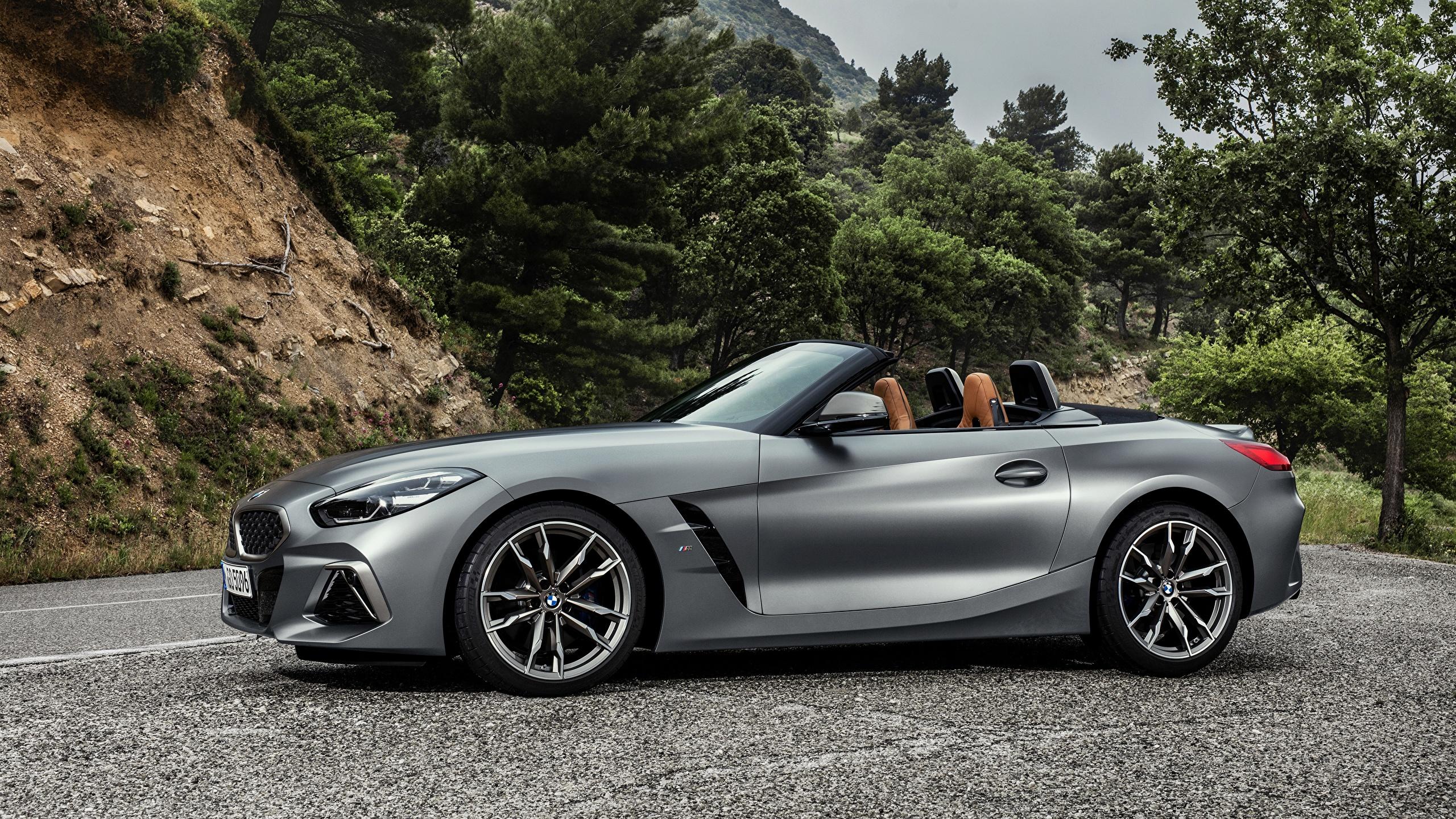 Image BMW Z4 M40i 2019 G29 Silver color auto Side 2560x1440