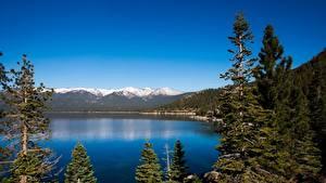 Hintergrundbilder Berg See Wald Landschaftsfotografie USA Kalifornien Lake Tahoe