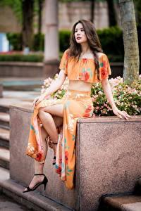 Hintergrundbilder Asiaten Sitzt Bein Braune Haare junge frau