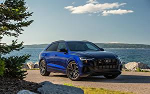 Bilder Audi Softroader Blau Metallisch SQ8 TFSI, North America, 2020 automobil