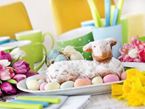 Hintergrundbilder Feiertage Ostern Tulpen Backware Hausschaf Ei Lebensmittel