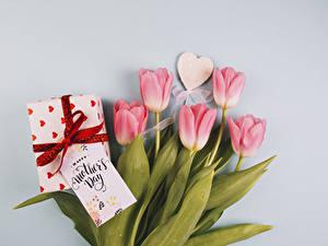 Fotos Feiertage Tulpen Grauer Hintergrund Rosa Farbe Herz Geschenke Blumen