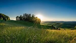 Hintergrundbilder Schweiz Acker Morgendämmerung und Sonnenuntergang Bäume Lichtstrahl Natur