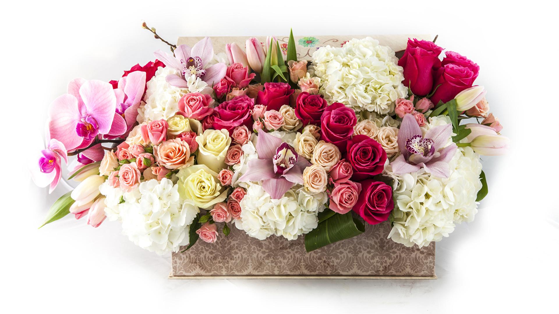 Mazzo Di Fiori Orchidee.Immagini Mazzo Di Fiori Rose Orchidee Fiori Ortensia 1920x1080