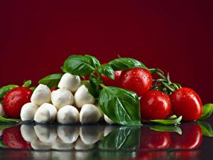 Fotos Tomate Käse Farbigen hintergrund Tropfen Blatt Lebensmittel