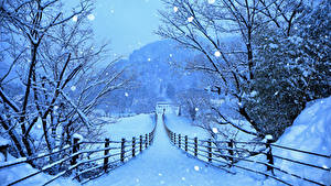 Bilder Japan Winter Wege Schnee Zaun Shirakawa-go and Gokayama Natur