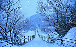 Bilder Japan Winter Wege Schnee Zaun Shirakawa-go and Gokayama