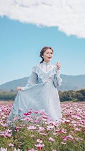 Fotos Grünland Kosmeen Asiatische Braunhaarige Kleid Hand