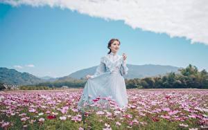 Fotos Grünland Kosmeen Asiatische Braunhaarige Kleid Hand junge Frauen
