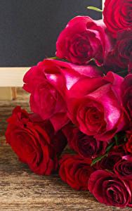 Fotos Rosen Großansicht Bretter Burgunder Farbe Blüte