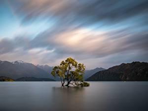 Hintergrundbilder Neuseeland Gebirge Wasser Bäume Wolke Wanaka, Otago