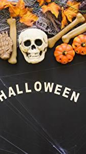 Bilder Halloween Feiertage Cranium Kürbisse Englisch