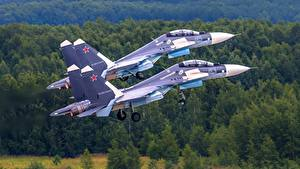 Fotos Flugzeuge Jagdflugzeug Soukhoï Su-30 Russisches Zwei SM Luftfahrt