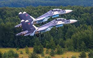 Fotos Flugzeuge Jagdflugzeug Soukhoï Su-30 Russische 2 SM Luftfahrt
