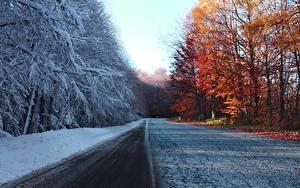 Hintergrundbilder Herbst Wege Winter Bäume Schnee