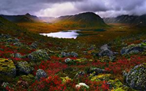 Fotos Russland Krim See Steine Landschaftsfotografie Hügel Laubmoose