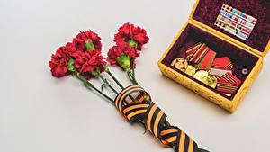 Hintergrundbilder Nelken Tag des Sieges 9 Mai Grau Grauer Hintergrund Band Orden Medaille Blumen