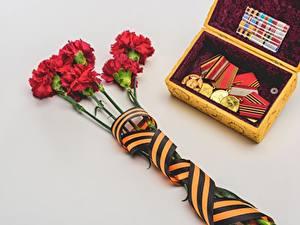 Hintergrundbilder Nelken Tag des Sieges 9 Mai Graue Grauer Hintergrund Band Orden Medaille Medaille Blumen