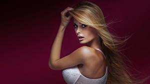 Bilder Farbigen hintergrund Blondine Hand Blick Büstenhalter Mädchens