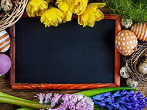 Bilder Feiertage Ostern Vorlage Grußkarte Ei