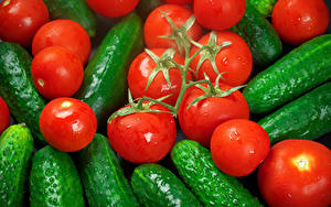 Bilder Gemüse Tomaten Gurke Hautnah
