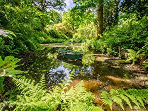 Fotos England Park Teich Boot Ramster Gardens Surrey Natur