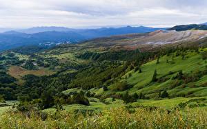 Bilder Italien Landschaftsfotografie Wälder Grünland Hügel