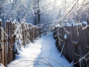 Wallpapers Winter Branches Snow Fence Nature