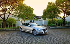 Fotos Audi Hybrid Autos Silber Farbe 2016 A6 L e-tron (4G,C7)